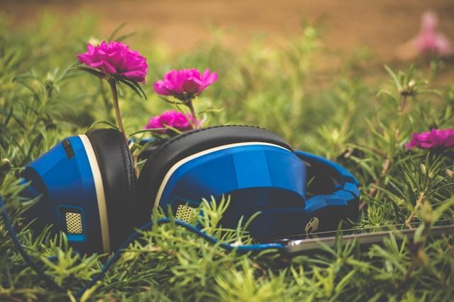 muzica noua