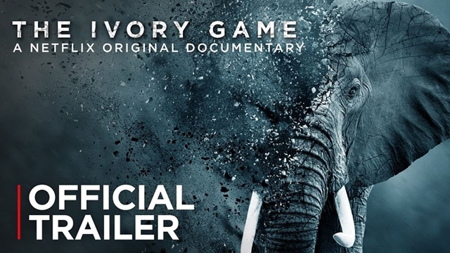 ivory game